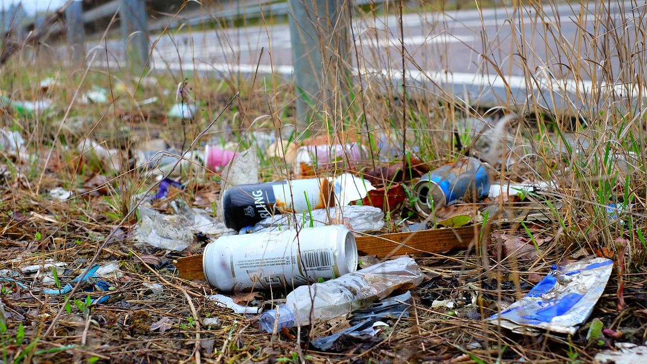 В КоАП введут ответственность за выброс мусора из машины