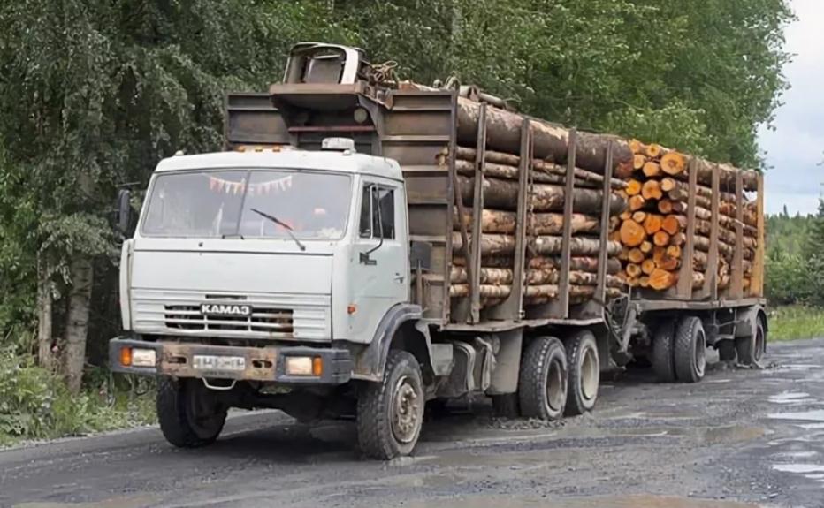 В Псковской области весенние ограничения вводят с 23 марта