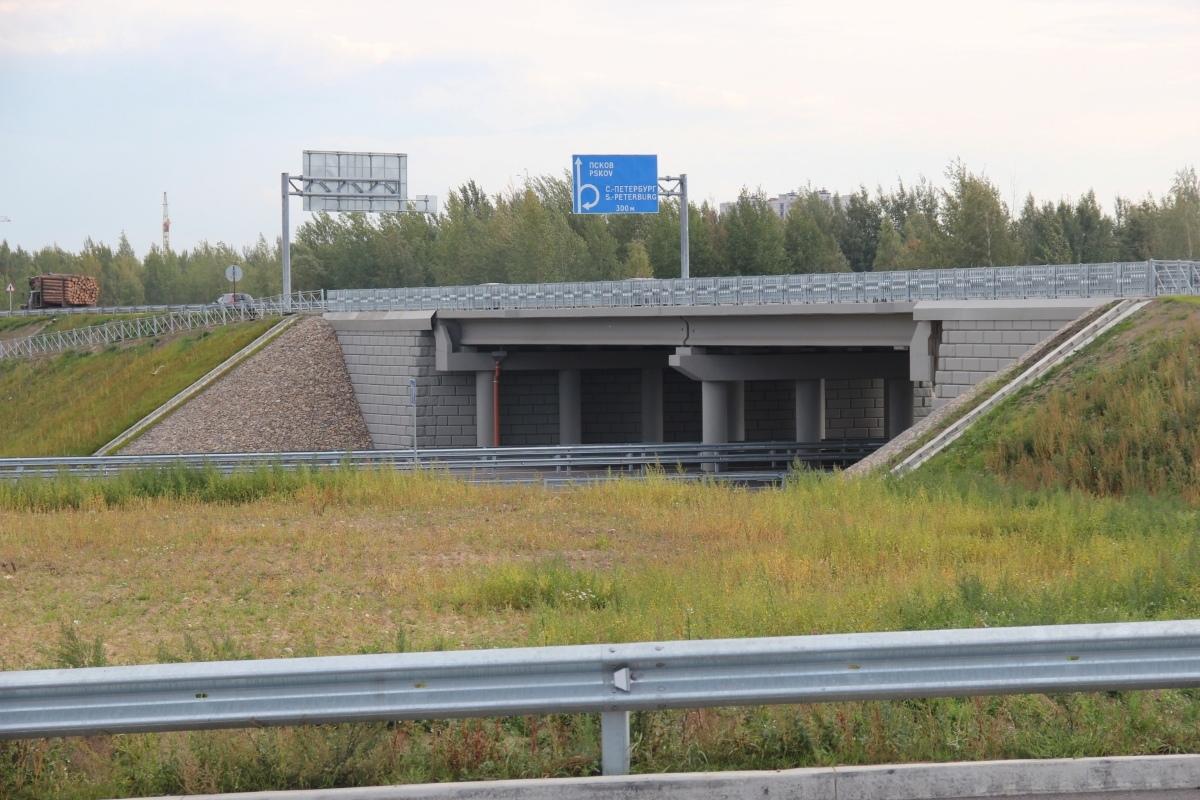 Строительство Северного обхода Пскова должны завершить в 2023 году