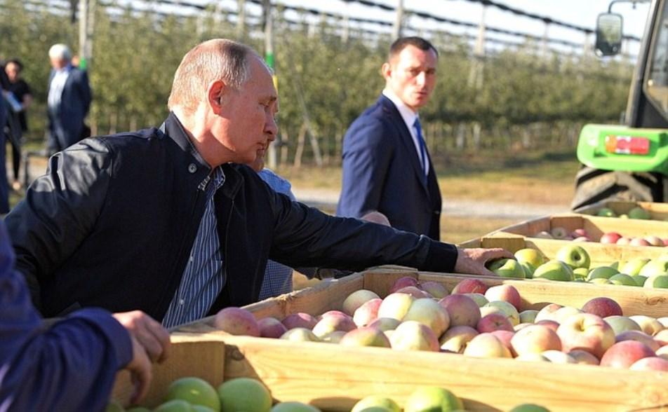 На Ставрополье построят новый холодильный склад
