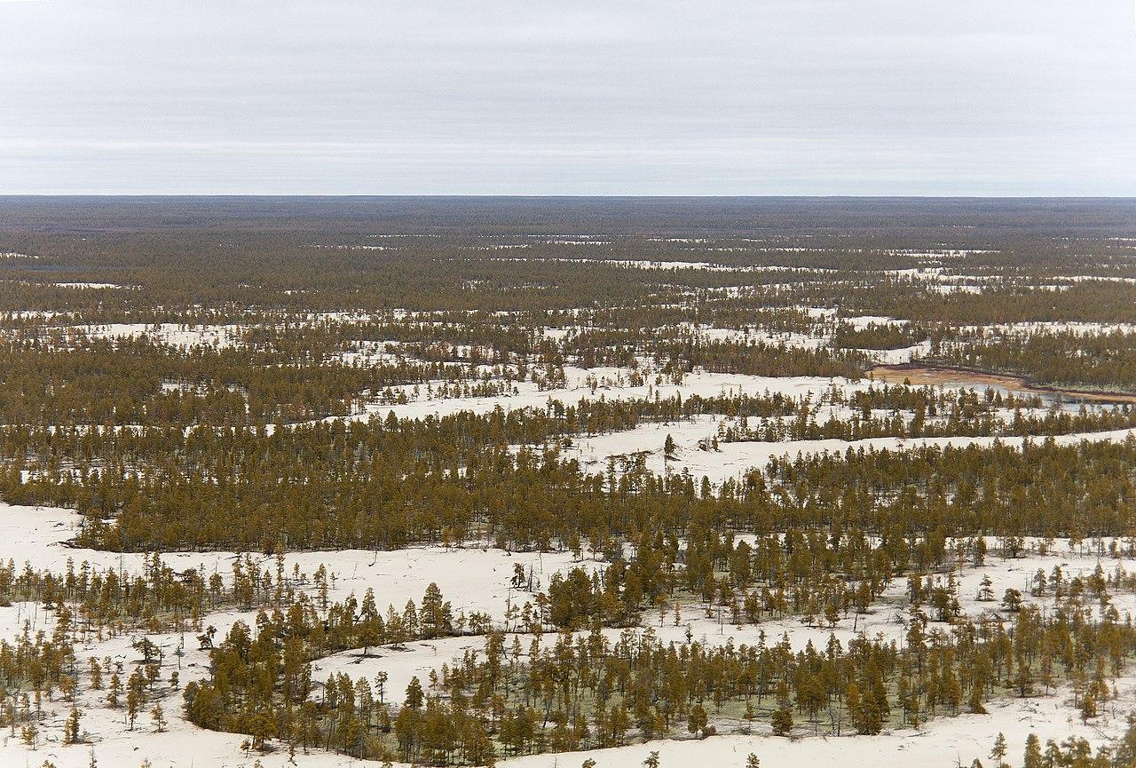 В арктических районах Якутии откроют четыре логистических центра