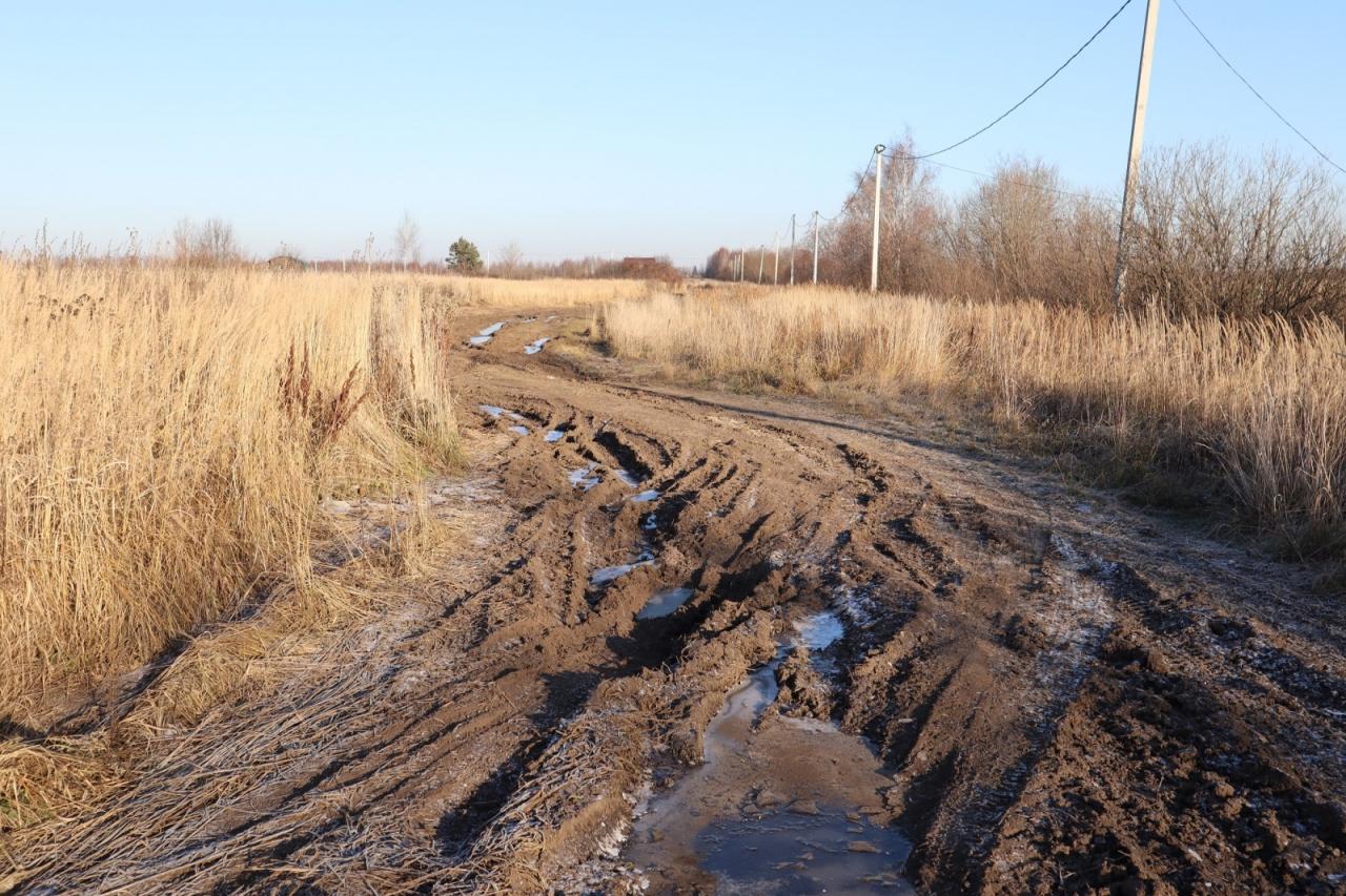 В Костромской области тоже объявили сроки весенних ограничений