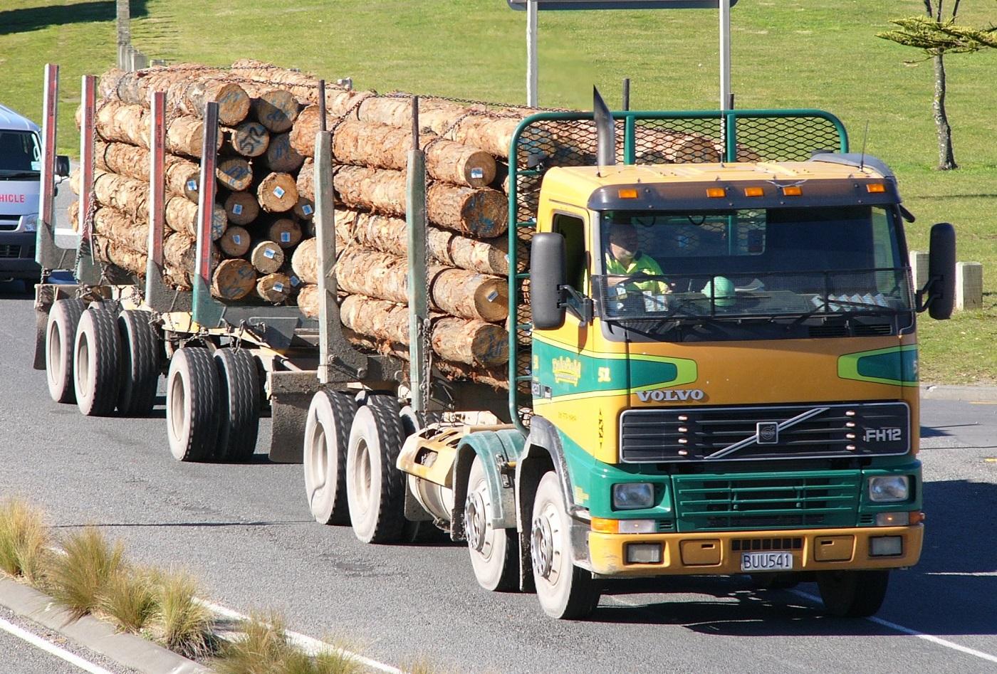 Регионам могут разрешить снимать ограничения на движение лесовозов