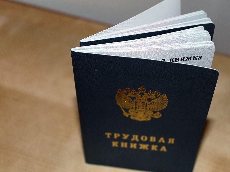 Государственная Дума приняла в первом чтении законопроект об электронных трудовых книжках