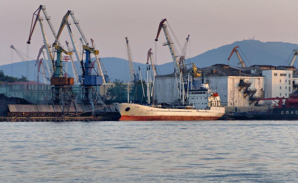 К 2022 году во Владивостоке построят рыбный логистический комплекс