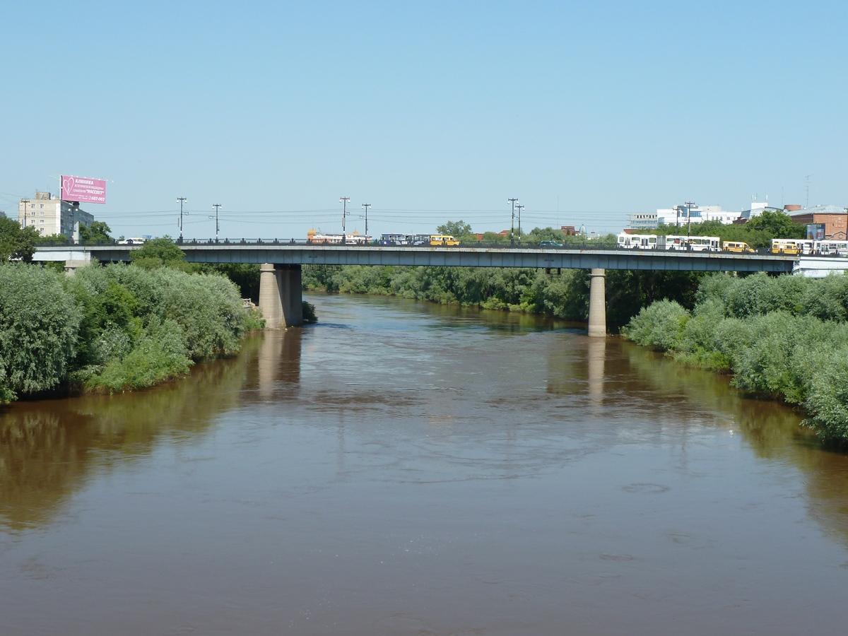 В Омске к 2024 году отремонтируют три старейших моста