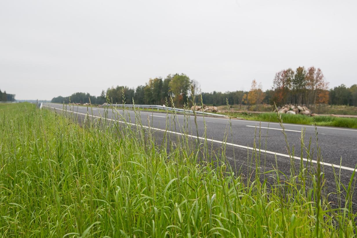 На трассе А-180 «Нарва» в Ленинградской области ограничат движение