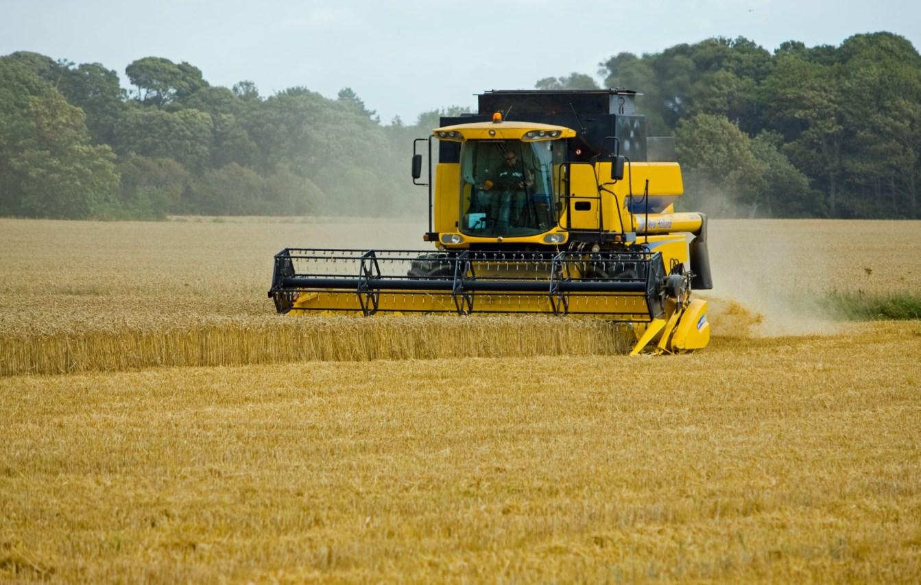 Правительство утвердило формулу расчета гибкой пошлины на экспорт зерна