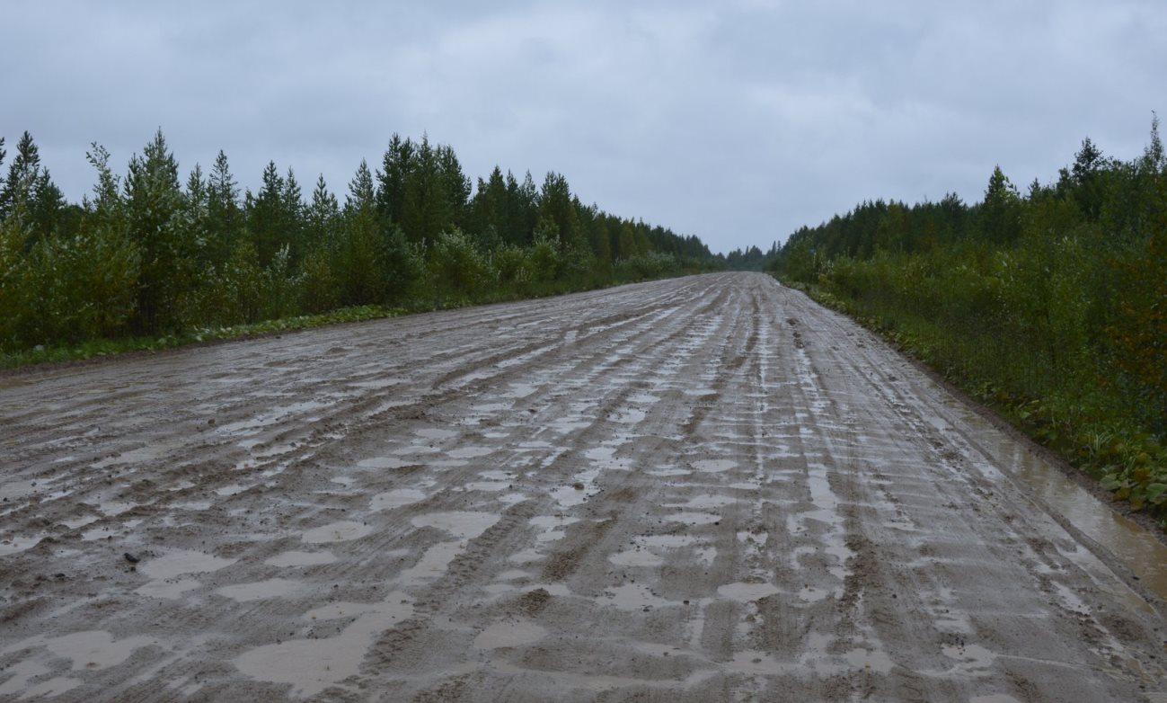 Проект асфальтирования дороги «Северодвинск-Онега» подготовят к лету 2021 года