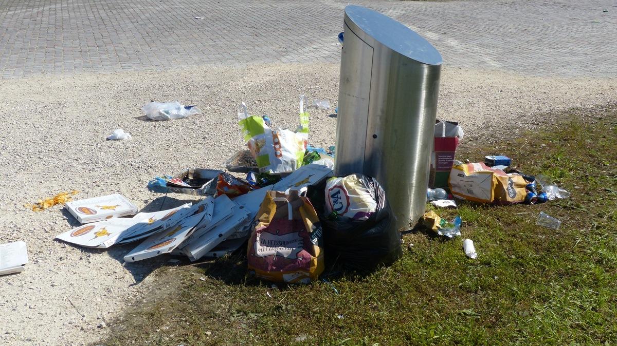 Московские власти предлагают ввести штрафы за выброс мусора на обочину