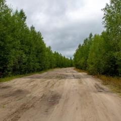 Трассу «Архангельск-Онега» в Архангельской области заасфальтируют
