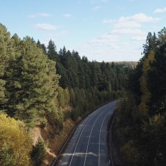Согласовано выделение земель под дорогу «Тайга-Томск»