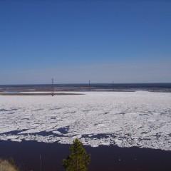 Строительство моста через Лену потребует новых мер поддержки МСП в Якутии