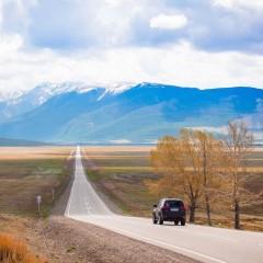 К 2029 году протяженность федеральных дорог увеличится на 20 тыс. км