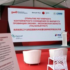 В Московскую область прибыл первый регулярный контейнерный поезд из Китая