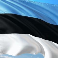 Эстония начала работы по строительству границы с Россией