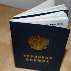 До конца 2020 года россияне должны выбрать электронную или бумажную трудовую книжку