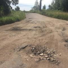 Ради туристов в Новгородской области начнут асфальтировать дороги
