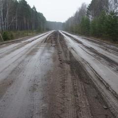 В Томской области весенние ограничения продлятся полтора месяца