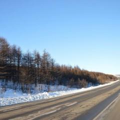 Участок трассы «Колыма» на границе с Якутией закроют из-за угрозы распространения коронавируса