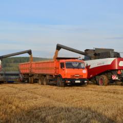 В Красноярском крае создадут ТОР на базе агропарка «Сибирь»