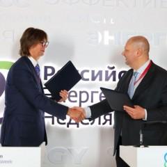 Во Владивостоке запустят первый в России каршеринг электромобилей
