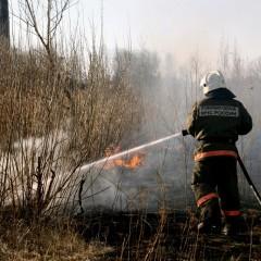 Пожарную технику предлагают избавить от весогабаритного контроля